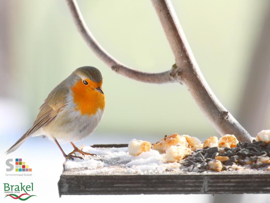 Inschrijvingen: Aankoop voederbakjes voor vogels tvv onze senioren